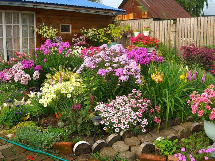 Красивые цветники на даче своими руками фото