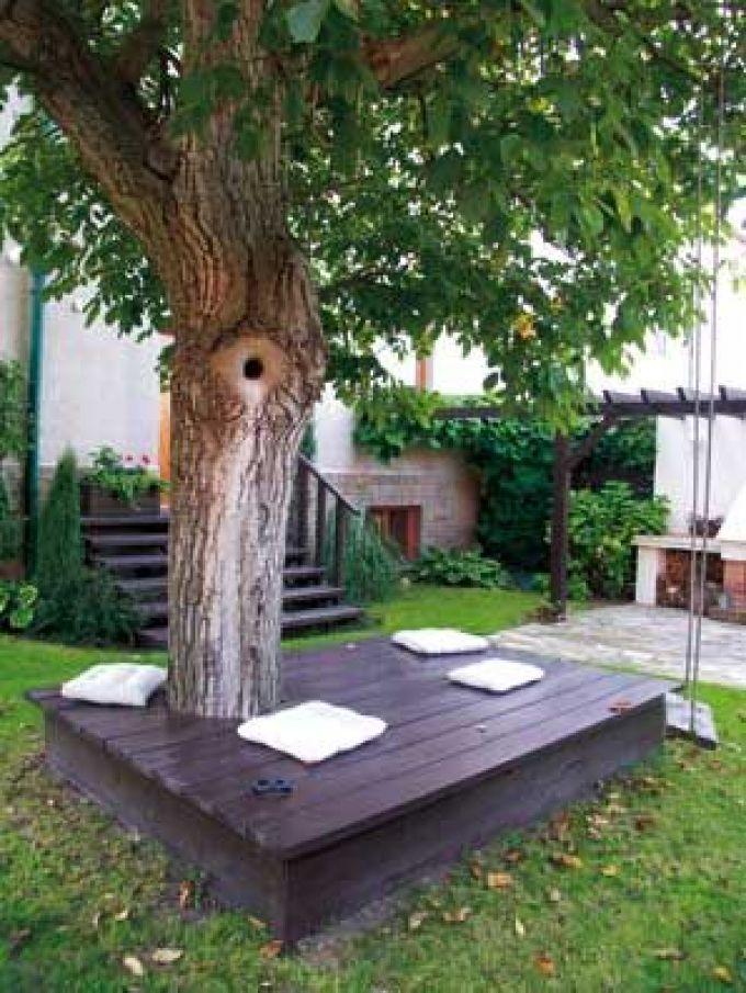 Деревья для дачи идеи